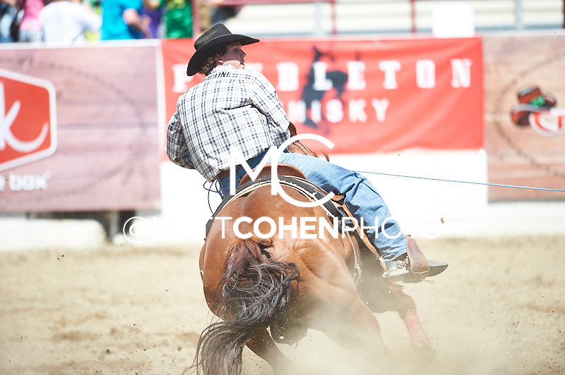 Team roper Zayne Dishion of Bishop, CA competes at the Redding Rodeo in Redding, CA<br /> <br /> <br /> UNEDITED LOW-RES PREVIEW<br /> <br /> <br /> File shown may be an unedited low resolution version used as a proof only. All prints are 100% guaranteed for quality. Sizes 8x10+ come with a version for personal social media. I am currently not selling downloads for commercial/brand use.