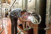 Weinkeller im Staatsweingut Meersburg, Meersburg, Bodensee, Baden-Württemberg, Deutschland