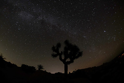 October 1, 2016 - Los Angeles, California, U.S - The Milky Way are seen above the Joshua Tree National Park in Twentynine Palms, California, October 2, 2016. (Credit Image: © Ringo Chiu via ZUMA Wire)