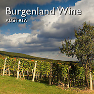 Austrian Vineyard   Pictures, Photos, Images & Fotos