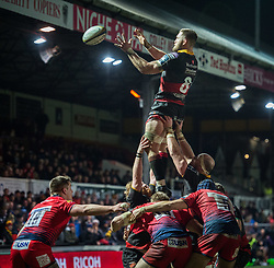 Dragons' Harrison Keddie claims the lineout.<br /> <br /> Photographer Simon Latham/Replay Images<br /> <br /> Anglo-Welsh Cup Round Round 4 - Dragons v Worcester Warriors - Friday 2nd February 2018 - Rodney Parade - Newport<br /> <br /> World Copyright © Replay Images . All rights reserved. info@replayimages.co.uk - http://replayimages.co.uk