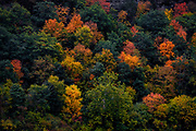 Fall Colors along the Susquehanna River