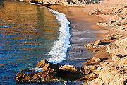 Evening light on surf at Headland Cove, Point Lobos State Reserve, California
