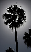 General Views round Sunset Bay resort/complex<br /> <br /> Sunday  31/01/2016<br /> <br /> [Mandatory Credit; Peter SPURRIER/ntersport Images]