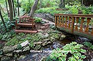 65021-028.18 Shade garden with stream on hillside, hostas, ferns, bridge, bench,  St. Louis  MO