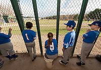 Fratellos players Drew CeCarli, Christian Blake, Molly McLean, Stefan Kafanelis and Hessessy Mosher-Goodwin in the dugout for the season opener of Cal Ripken Minors Baseball at Francouer Field Saturday evening.  (Karen Bobotas/for the Laconia Daily Sun)