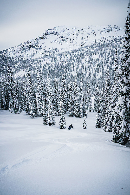Aaron Cooperman in the glades of the Monashees, British Columbia.