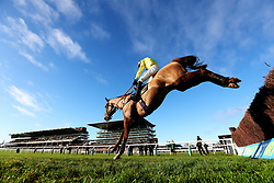 Jockey Tom O'Brien on Lamb or Cod during the Watch Live Racing On Betbright.com Handicap Chase