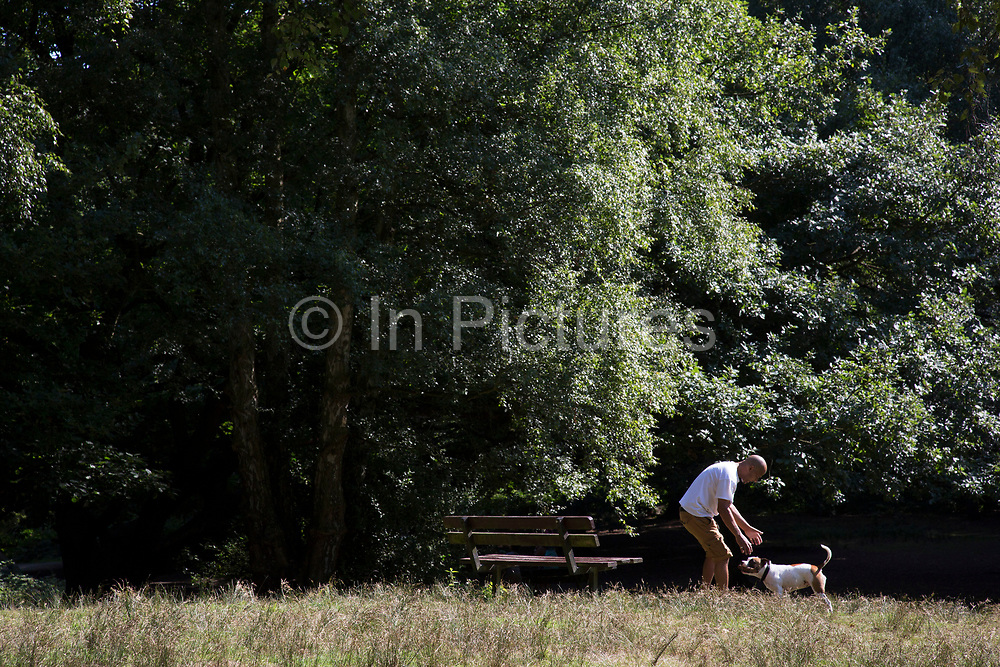 """Man and his dog. Hampstead Heath (locally known as """"the Heath"""") is a large, ancient London park, covering 320 hectares (790acres). This grassy public space is one of the highest points in London, running from Hampstead to Highgate. The Heath is rambling and hilly, embracing ponds, recent and ancient woodlands."""