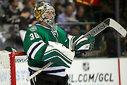 DALLAS, TX - OCTOBER 17:  Dan Ellis #30 of the Dallas Stars looks on against the San Jose Sharks on October 17, 2013 at the American Airlines Center in Dallas, Texas.  (Photo by Cooper Neill/Getty Images) *** Local Caption *** Dan Ellis