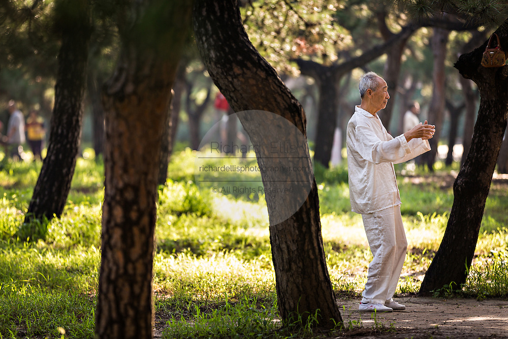 An elderly Chinese man practices tai chi martial arts exercise early morning at the Temple of Heaven Park during summer in Beijing, China