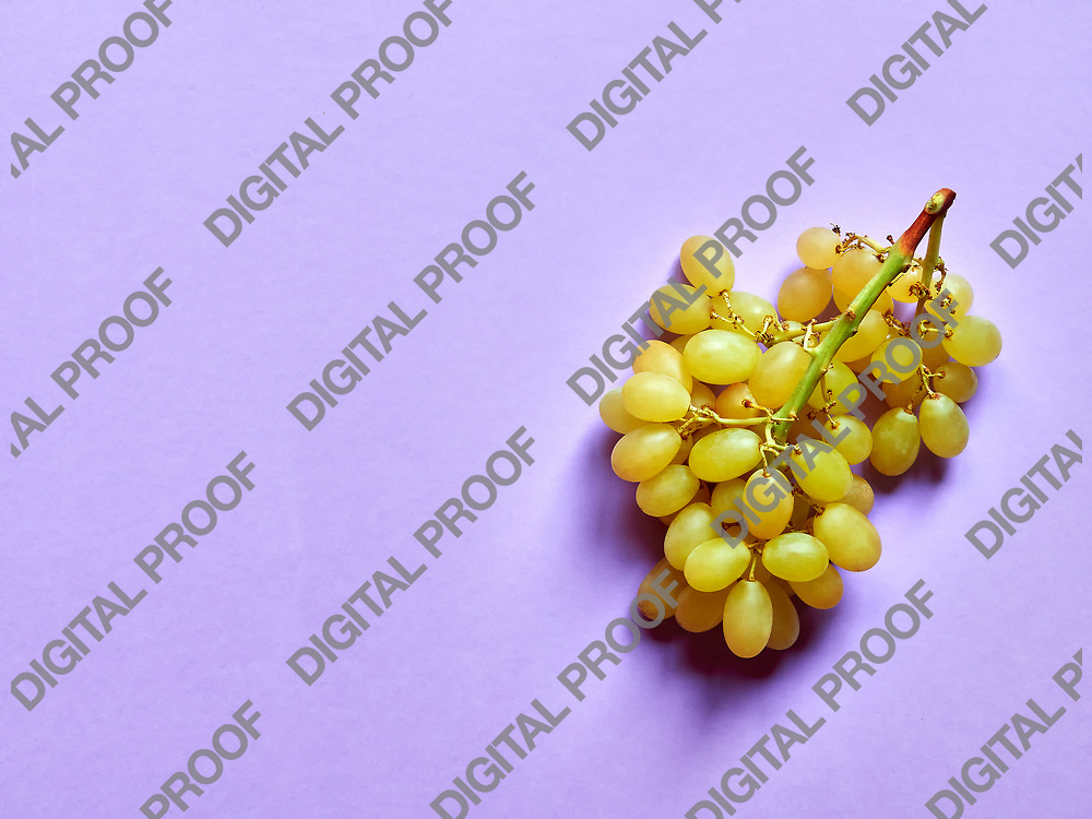 Above view of isolated set of a bunch of sweet seedless grapes in studio with pastel violet background
