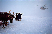 The children of nomadic Nentsy herders welcome a supply helicopter in the frigid north of Siberia, a region of oil and natural gas riches. But fewer places on earth are home to a more challenging environment, where temperatures in the winter plummet to minus 58 degrees Fahrenheit, or minus 50 Celsius.  © Steve Raymer / National Geographic Creative