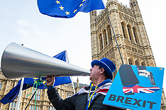 2019-02-12 Anti-Brexit protesters in Westminster