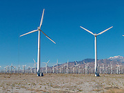 Field of wind turbines California USA.