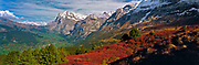 Autumn huckleberry bushes create a crimson carpet beneath the north face of the Eiger, overlooking Switzerland's Grindelwald Valley.