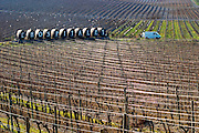 Domaine Gerard Bertrand, Chateau l'Hospitalet. La Clape. Languedoc. Metal supporting wires for the vines making graphic reflections in the vineyard. France. Europe.