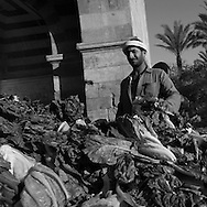 Egypt. Cairo : Bab al Futuh gate, north walls, begining of the medieval street Al Mu'izz li din Allah  , market, Cairo