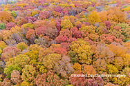 63876-02403 Aerial view of fall color trees Stephen A. Forbes State Park Marion Co. IL