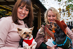 Hampstead Heath, London, October 26th 2014. Dogs rescue and re-homing charity All Dogs Matter hold their annual Halloween fancy dress dog walk on Hampstead heath. PICTURED: Elizabeth and Artie the yorkshire terrier with Narcea and her Daschund Gus.