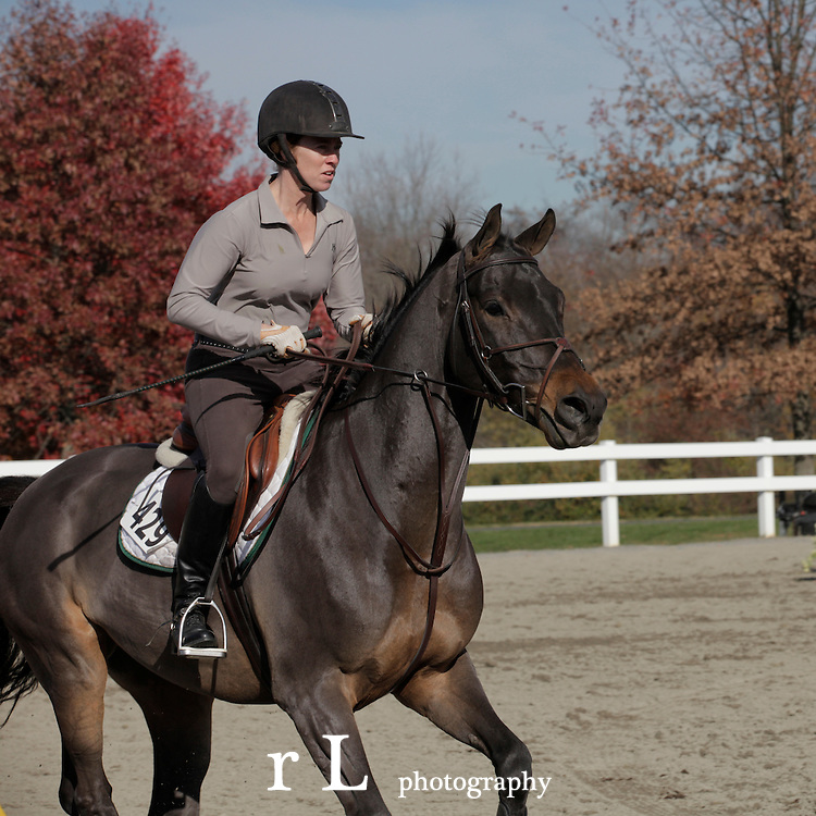 Best horse photography from Woodedge Farm at NJ Horse Park