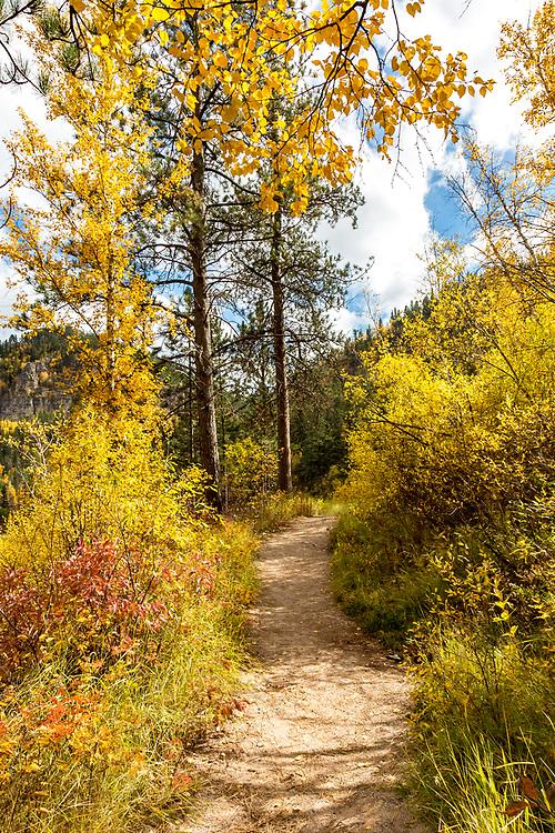Spearfish Canyon Fall Colors, Black Hills of South Dakota. Photo taken September 29, 2017.