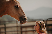 Sumaya Horse