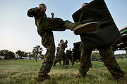 Female recruits practice some martial arts techniques in the hand to hand phase of their training.  Marine Corps Recruit Depot at Parris Island in South Carolina is where all male recruits living east of the Mississippi River and all female recruits from all over the US receive their arduous twelve week training in their quest to become marines. Even though there are two current active wars and a weak economy, recruitment has not been effected.  Actually, recruiting numbers have increased, with more young men and women looking toward the military for answers.