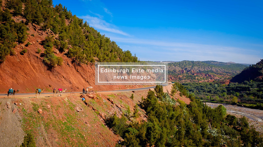 The road through the Ourika Valley south of Marrakech, Morocco, North Africa<br /> <br /> (c) Andrew Wilson   Edinburgh Elite media