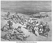 The Murrain of Beasts (or The Fifth Plague: Livestock Disease) Exodus 9:2-3 From the book 'Bible Gallery' Illustrated by Gustave Dore with Memoir of Doré and Descriptive Letter-press by Talbot W. Chambers D.D. Published by Cassell & Company Limited in London and simultaneously by Mame in Tours, France in 1866