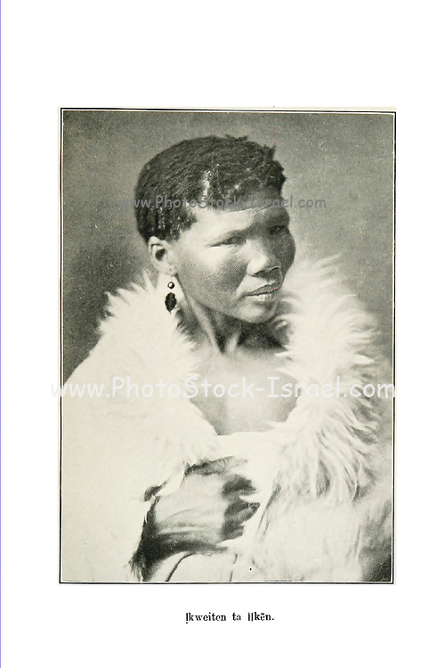 Portrait of a female Bushman From the book '  Specimens of Bushman folklore ' by Bleek, W. H. I. (Wilhelm Heinrich Immanuel), Lloyd, Lucy Catherine, Theal, George McCall, 1837-1919 Published in London by  G. Allen & Company, ltd. in 1911. The San peoples (also Saan), or Bushmen, are members of various Khoe, Tuu, or Kx'a-speaking indigenous hunter-gatherer groups that are the first nations of Southern Africa, and whose territories span Botswana, Namibia, Angola, Zambia, Zimbabwe, Lesotho and South Africa.