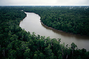 One of the many rivers snaking through the Asmat, a large, steamy hot tidal swamp. Image from the book project Man Eating Bugs: The Art and Science of Eating Insects.