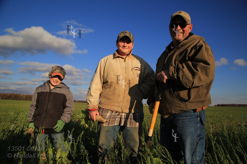 Farmer Dennis Reer poses with sons Joseph (14) and John (9) who hold rashishes grown in cover crop field containing flax, radish, cereal rye, buckwheat, sunflower and rapeseed in early November; Attica, Ohio.
