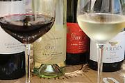 Weingut Golan Heights Winery, Rot- und Weißwein, Qazrin, Golan, Galiläa, Israel.|.Golan Heights Winery, red and white wine, Qazrin, Golan, Galilee, Israel.