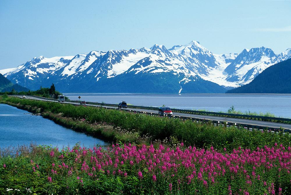 Alaska, Turnagain Arm. Seward highway and Chugach mountains with Fireweed.