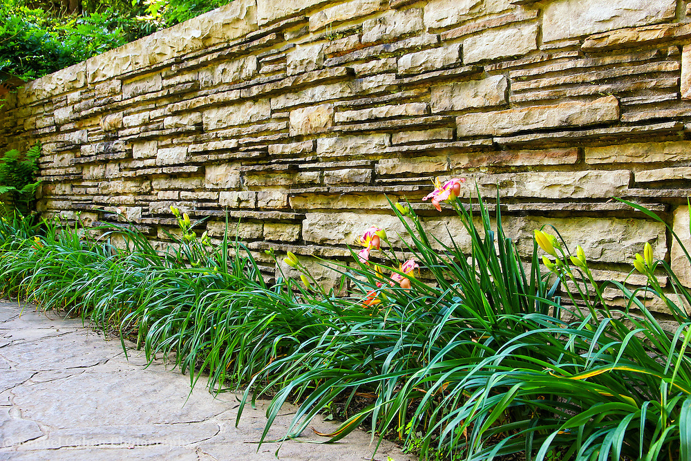 """""""The Wall""""<br /> <br /> A wall and flowers at Fallingwater.<br /> <br /> Architecture: Structures and buildings by Rachel Cohen"""