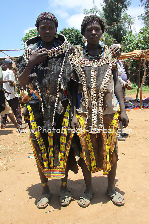 Ethiopia. Omo Valley, Bana Tribe women in shells and leather
