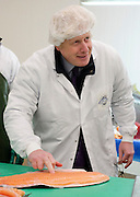 """© Licensed to London News Pictures. 09/03/2015. Chessington, UK The Mayor of London, Boris Johnson, marks the first day of Apprentice Week by confirming plans for a new scheme that will create thousands of new apprenticeship opportunities in London. The Mayor met apprentices working at the New England Seafood fish factory and tried his hand at tuna loining, salmon filleting and """"pin-boning"""" – the art of removing bones using tweezers. . Photo credit : Stephen Simpson/LNP"""