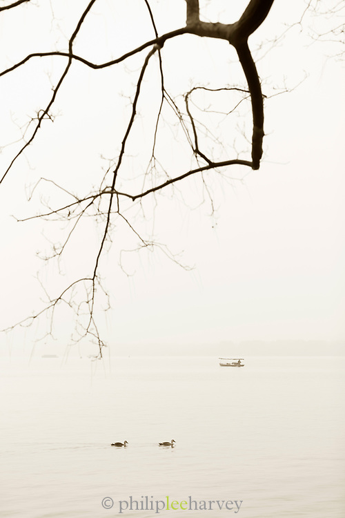 Black and white landscape with view of silhouetted trees against a lake at dawn, boat and birds, West Lake, Hangzhou, Zhejiang Province, China