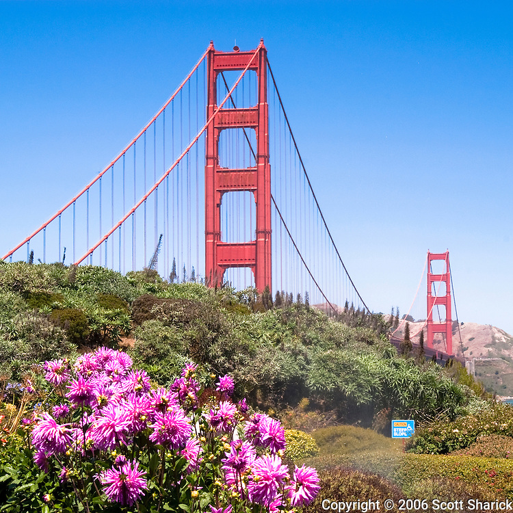 A view of both towers of the Golden Gate Brisge from Golden Gate Park