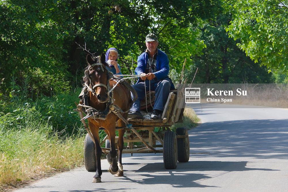 Horse cart, near Plovdiv, Bulgaria