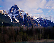 Hazleton Range rising above aspen and spruce forest in early spring, British Columbia, Canada.