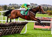 Navan Races 10/11/2019