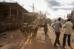 Man riding donkey cart on dirt road while other people standing on dirt road