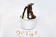 soft ice cream (soft serve, creemee) dessert
