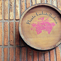 South America, Chile, Santiago. Bottling Plant at Santa Rita Winery.