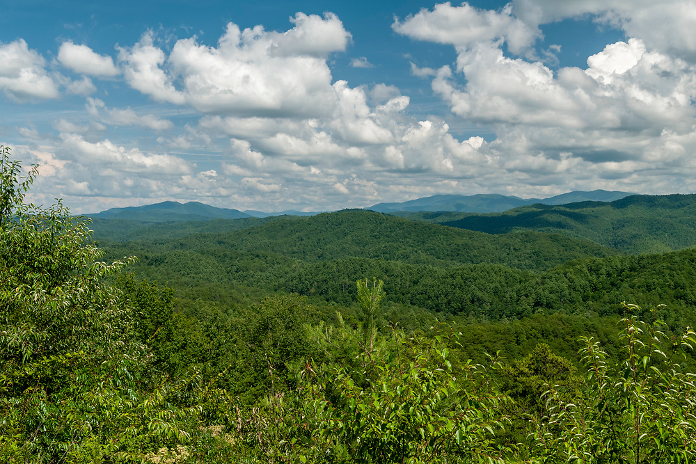 View from the Parson Bald Overlook on the Foothills Parkway in Great Smoky Mountains National Park in Walland, Tennessee on Wednesday, August 12, 2020. Copyright 2020 Jason Barnette