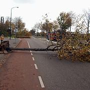 Stormschade Gemeenlandslaan Huizen, bomen over de weg, afgebroken