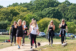"""© Licensed to London News Pictures. 12/09/2020. Surrey, UK. Walkers enjoy the glorious sunshine in Richmond Park in South West London this afternoon before the """"Rule of 6"""" comes into force on Monday as weather experts announce a 6 day mini heatwave in the South East of England this week with highs in excess of 29c. Prime Minister Boris Johnson is already under pressure after he announced on Friday that gatherings of more than six people will be banned from Monday in the hope of reducing the coronavirus R number. The Rule of Six as it is known, has already become unpopular with MPs and large families. Photo credit: Alex Lentati/LNP"""