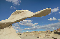 Wing sandstone formation at Bisti Badlands, Bisti/De-Na-Zin Wilderness, New Mexico